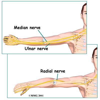 Median Neuropathy