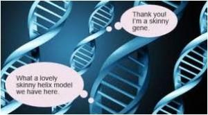 skinny gene