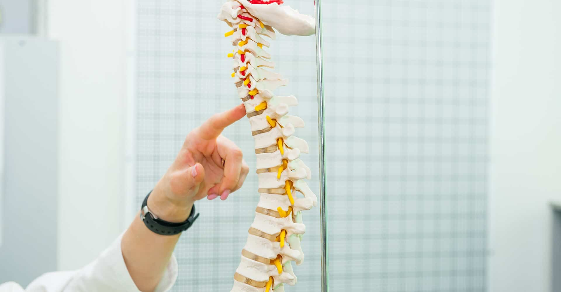 doctor pointing to spine